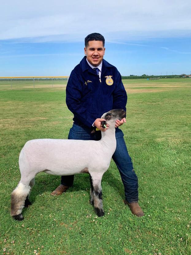 Aidan Flores, Le Grand FFA