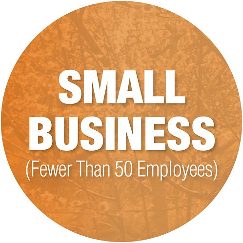 Certified Small Business Registration