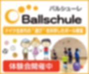 ballschule.main.png