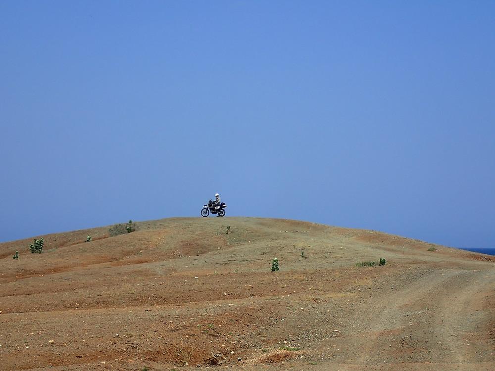 Kelvin in the desert