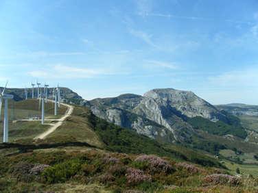 Windmill Way