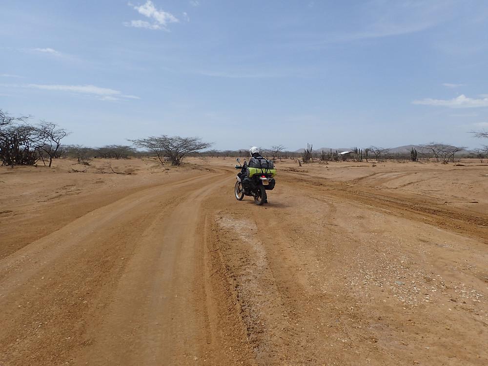 Desert Adventures!