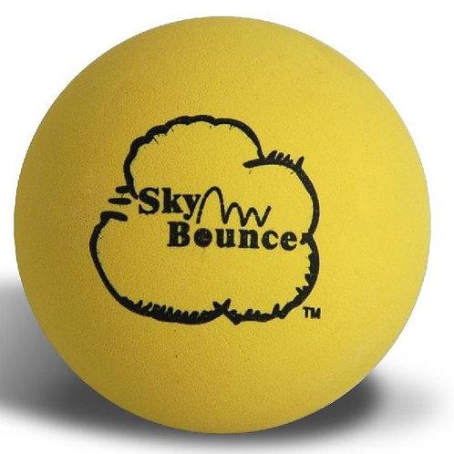 Wallball Ball