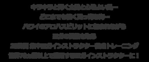 キラキラと輝く太陽と心地よい風、どこまでも続く真っ青な海 ハワイのアロハスピリットに包まれながらヨガの資格を取る 28日間 集中ヨガインストラクター養成トレーニング 世界70ヵ国以上で通用するヨガインストラクターに!