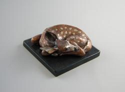 Copper Fawn