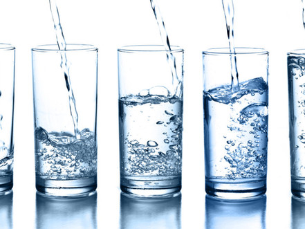 I did a 21 day Water Fast (no food) so I would have something interesting to  blog about ...