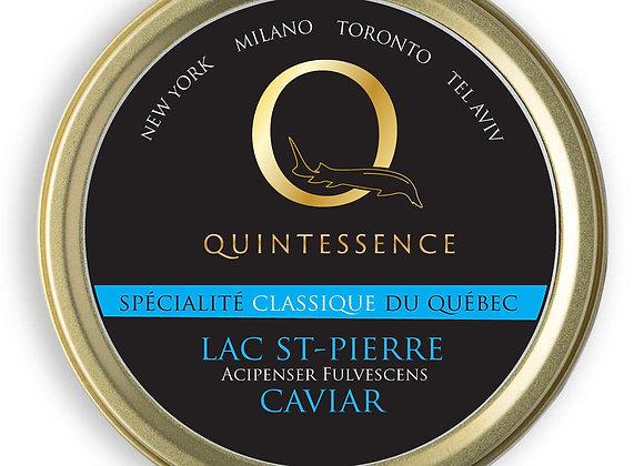 CAVIAR  LAC ST-PIERRE QUINTESSENCE 50 GR