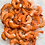 Thumbnail: CREVETTES ROSES ARGENTINE SAUVAGES 16/20 EASY PEEL 2LBS