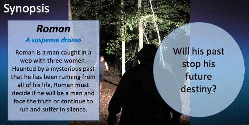 roman synopsis and log line.jpg