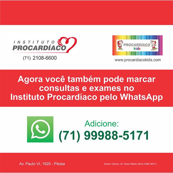 card de WhatsApp - ok.png