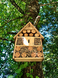 insect hotel at lhutel