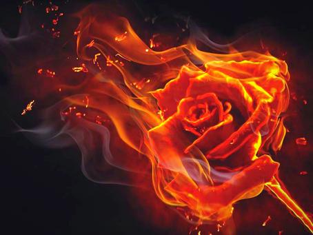 Lyric of the Week: FEVER, FERVOR, FIRE