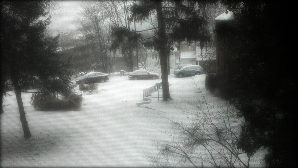 Snow in Englewood