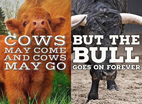 Lyric of the Week: COWS