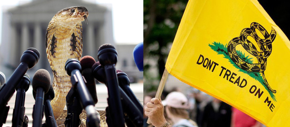 Nation's Snakes Distance Themselves From 'Don't Tread on Me' Flag