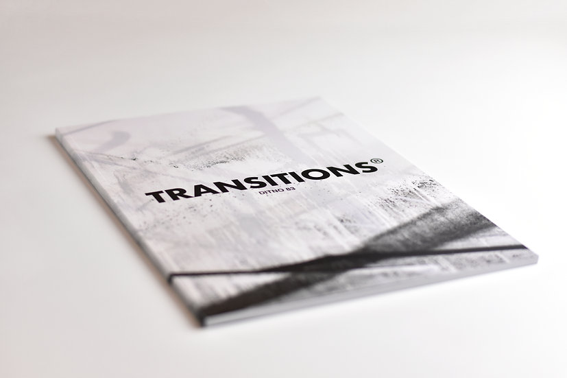 TRANSITIONS - Catalogue d'exposition