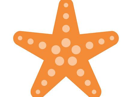 starfish_018.jpg