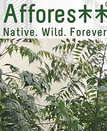 Afforestt Native Wild Forever.jpeg