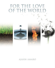 For the Love of the World COVER.jpeg
