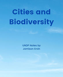 Cities and Biodiversity COVER.jpeg