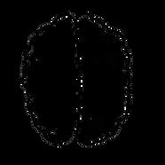 mindsetgo logo transparent.png