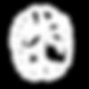 msg brain logo white 1.png