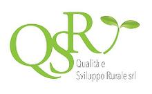 Logo QeSR.png