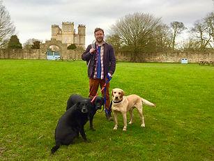 Man with three dogs