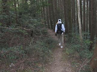 Walking the trails of Shikoku, Japan