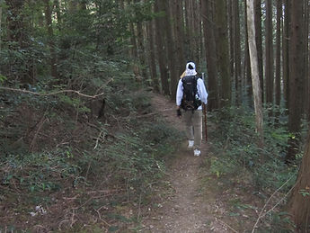 Walking the trails of Shikoku, Japan