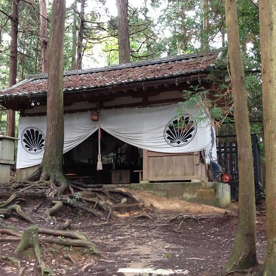 Jikiden Reiki Training in Hythe, Kent - April