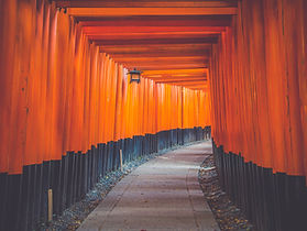 Tori gates at Fushimi Inari, Japan