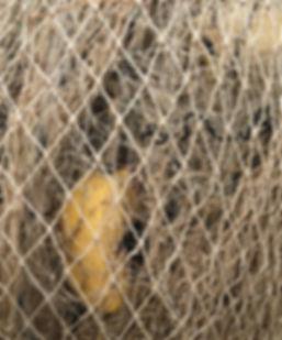 06 redes beige.jpg