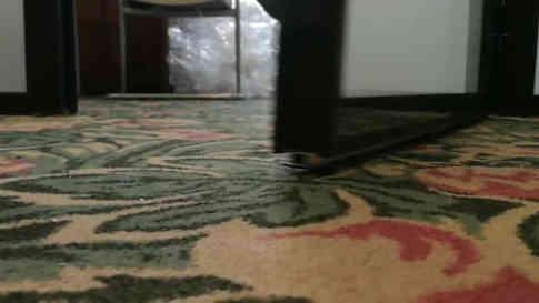 Дверной автоматический порожек