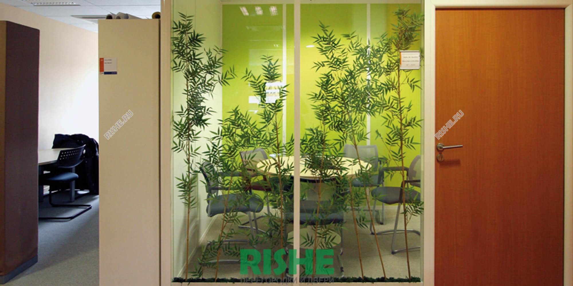 Растения между стекол в перегородке