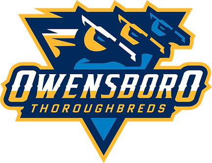 Tampa Bay Vs. Owensboro - Hoops for Hope Charity Event March 8