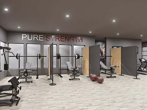 Stream Leisure & Fitness Systems