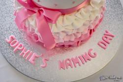 Sophie's Naming Day-106.jpg