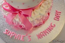 Sophie's Naming Day-107.jpg