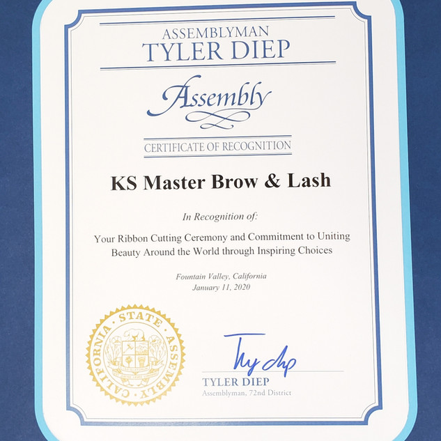 KS-MASTER-BROW-AND-KASH-CERTIFICATE-kim-