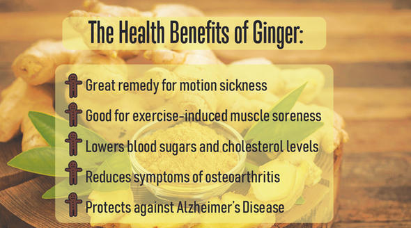 Benefits of Ginger DS
