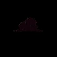 Copy of black and white barber logo desi