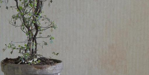 """Wandtapete""""Stripes dusty green"""" - wallpaper"""