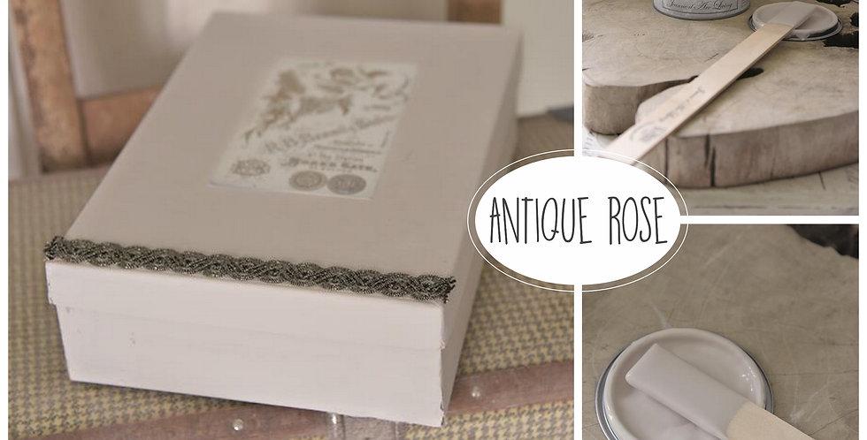 Vintage Paint Antique Rose