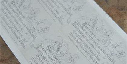 Bogen mit Background Rosen- Sheet with Hintergrund rose