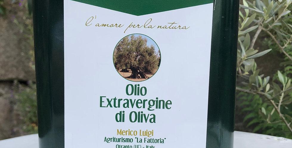La Fattoria- 3Liter-Apulien-extra vergine-