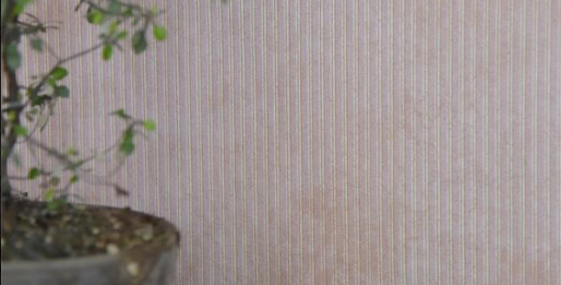 "Wandtapete""stripes rosa"" - wallpaper"