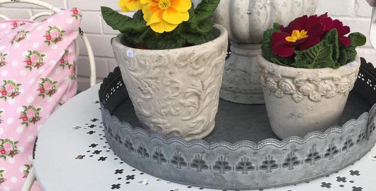 Blumentopf mit Rosen Karten - Flower pot
