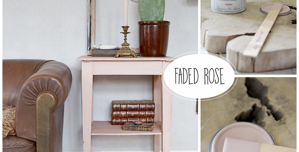 Vintage Paint Faded Rose