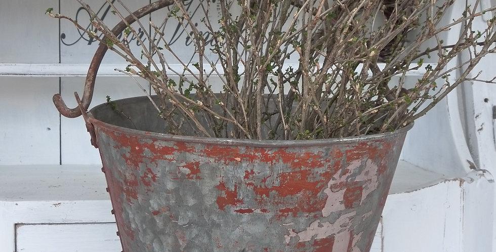 Eisenkübel -Iron bucket